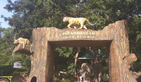 Tiger Reserve Tourism