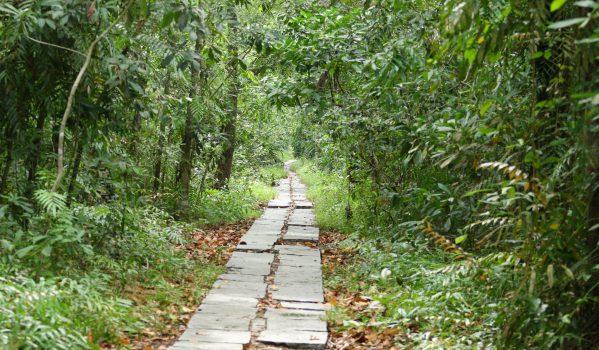 Pathiramanal at Kumarakom